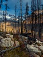 Class AA Second Place, Burn at Marble Canyon by Marion Faria
