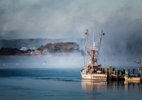 Class A Third Place, Sea Smoke by Nancy Marshall