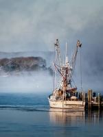 Class A Third Place, Sea Smoke by Nancy Marshall