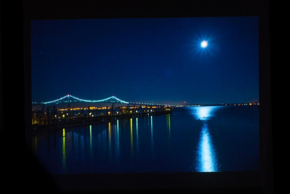 Moonlight by Tara Marshall