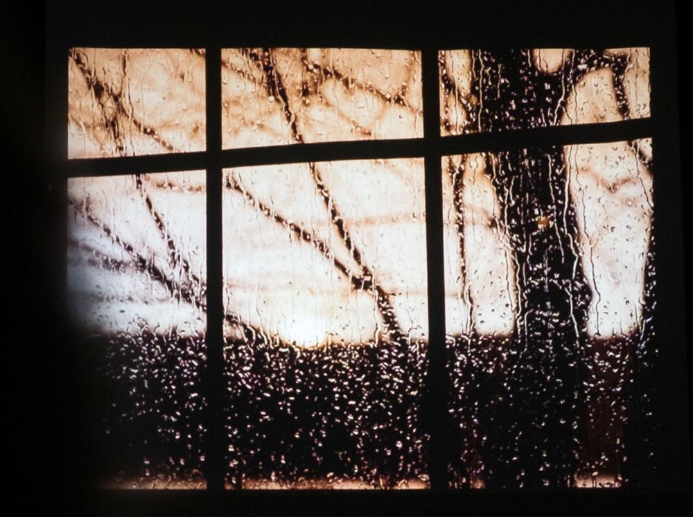 Rain by Lois Latraverse