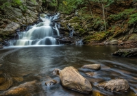 1st Place A~Wahconah Falls~Tara Marshall