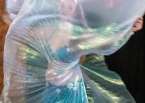 3rd_A_veiled dancer_VanDijk Leo