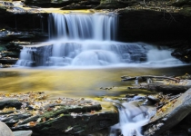 3rd_ColorPrintB_Comp1_Rickett Glen Falls_KFrench