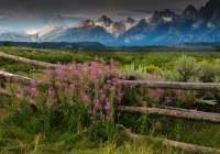 1st-a-sunrise-mist-in-the-tetons-39256-babin-sue