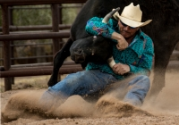 1ST~A~bull wrestler~VanDijk Leo