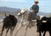 2nd~A~cowboy~VanDijk Leo