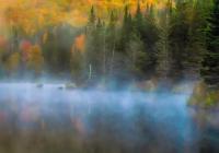 1st A~Misty Morning on Wildlife Pond~Johnson-Nieuwendijk Karen