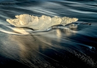 1st_Iceberg Ashore_Karl  Zuzarte_Color Print A