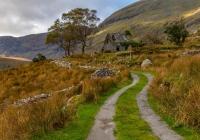 2nd~AA~A Taste of Ireland~Marshall Tara