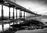 3rd-B&W  Ted-LawsonPier-at-Low-Tide