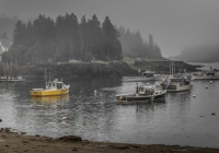 1st~71~A~Morning at Cutler Harbor~Babin Sue