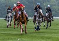 1st~72~AA~Newport Polo~Bernard Kevin