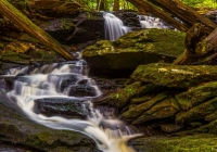 3rd~71~A~Codfish Falls~Marshall Tara