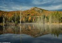 Wildlife Pond 2 - Leslie