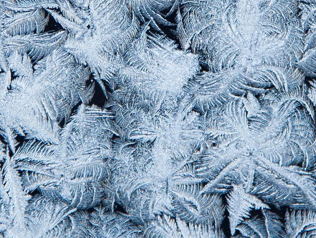 When the Frost is on the . . . Window