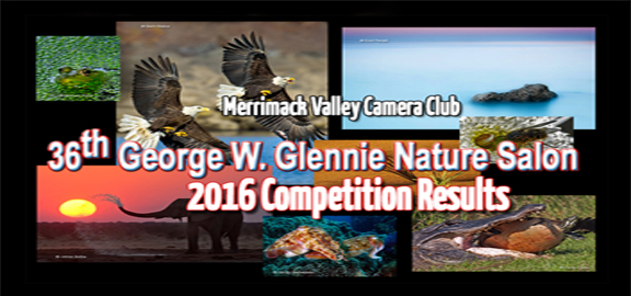 2016 Glennie Competition Results