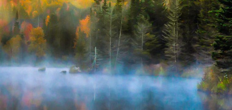 Wildlife Pond – Kevin
